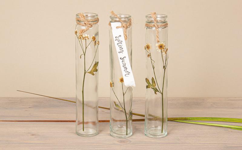 Vasen-Trio mit gepressten Blumen
